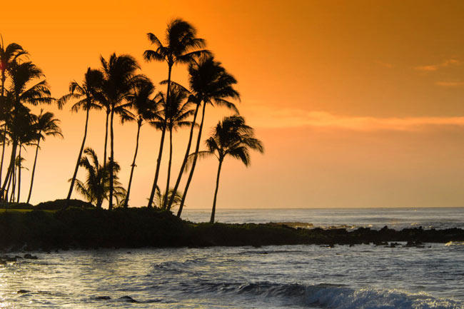 Hawaii Vacations and Resorts
